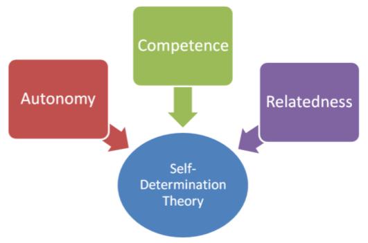 SelfDeterminationTheory